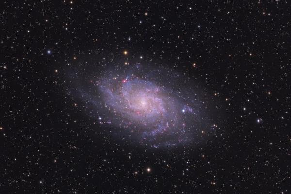 triangulum-galaxyE9909832-BDC1-E65E-8D3C-48E6C17582CE.jpg
